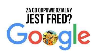 Nowa aktualizacja Google Fred, czyli spore zamieszanie w wynikach organicznych
